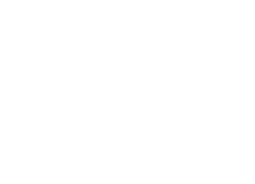 MG GROUPE