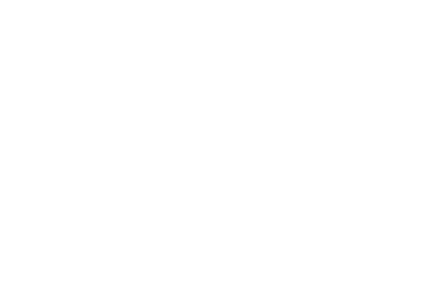 logo blanc MG GROUPE
